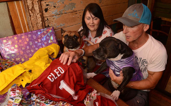 Britain S Most Pampered Pooch Dog Has Had 40 000 Spent On Her And